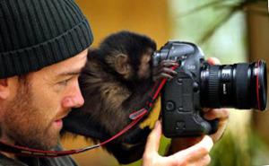 заработать на фотосъемке