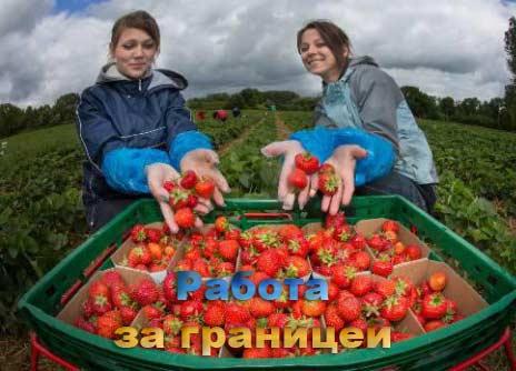 Работа за рубежом для русских
