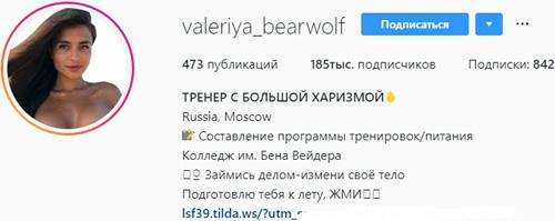Пример профиля Инстаграм